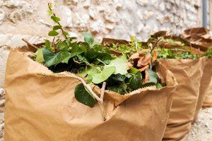 Distribution de sacs de déchets verts